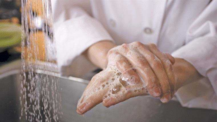 food hygiene course online