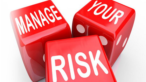 risk assessment training online